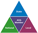 Pyramid: State, National, ADA Member, Local